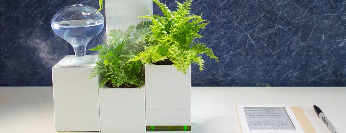 Plantas para oficina LeGrow humificador | Muebles de oficina Spacio