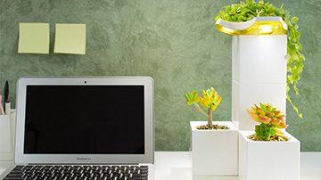 Plantas para oficina LeGrow portada | Muebles de oficina Spacio