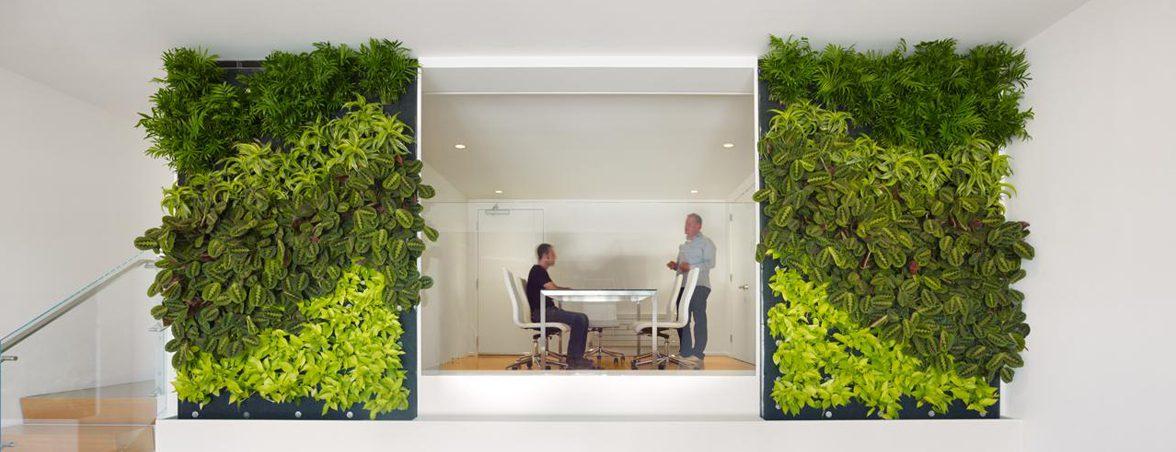 Oficina saludable plantas | Muebles de oficina Spacio