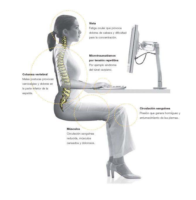 Sillas ergonómicas en el puesto de trabajo | Muebles de oficina Spacio