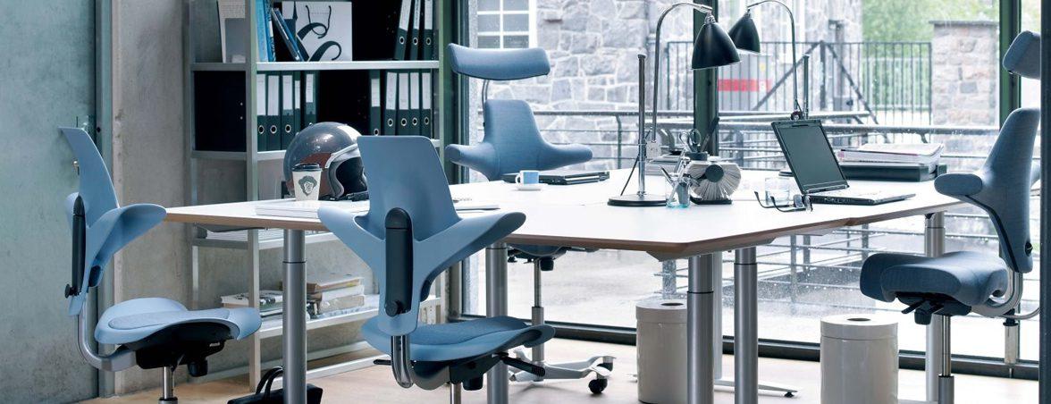 Silla Capisco azul | Muebles de oficina Spacio