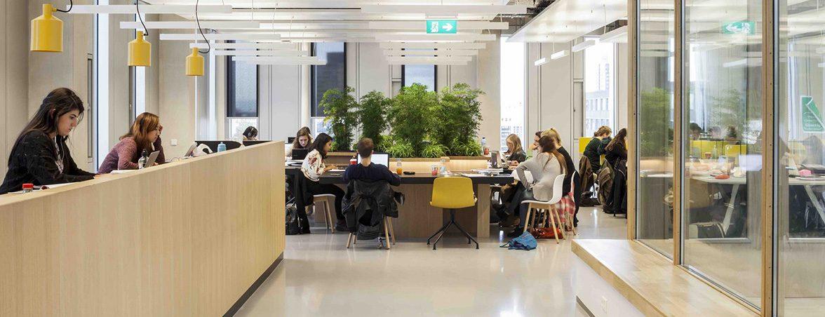 Sala estudio escuela Rotterdam   Muebles de oficina Spacio
